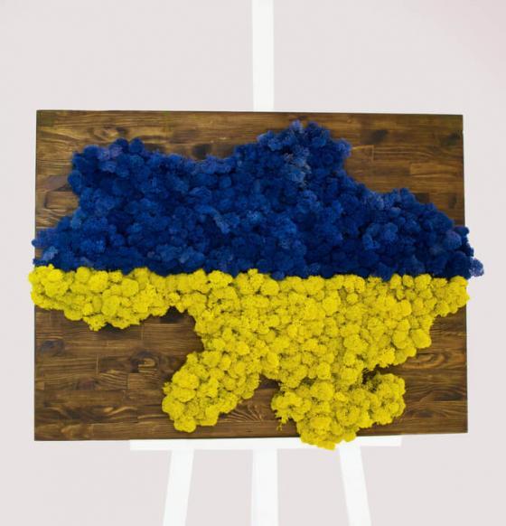 Карта Украины из ягеля