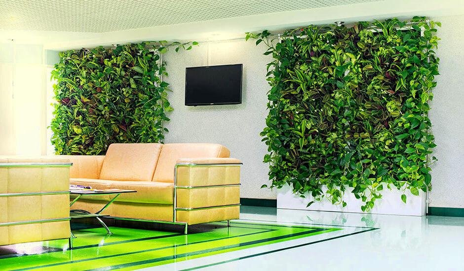 Чего боятся покупатели зеленых стен