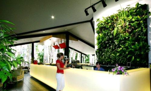 Озеленение салона красоты: фото