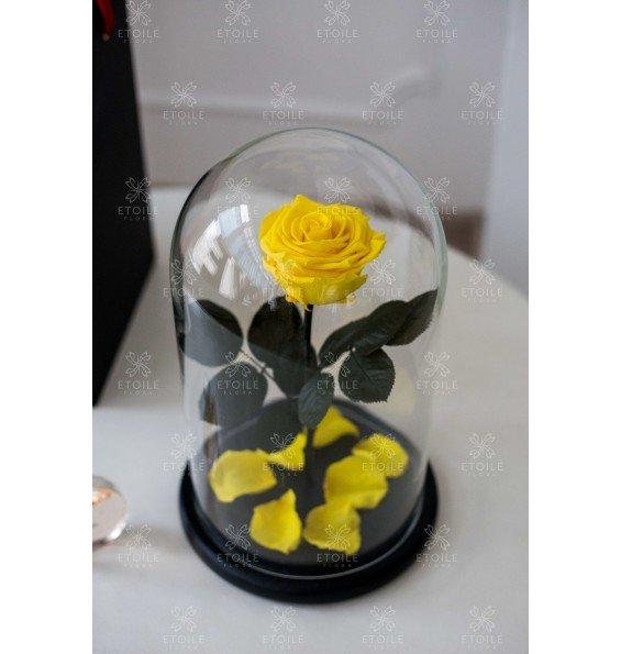 """Роза в колбе """"Бархатный желтый"""""""