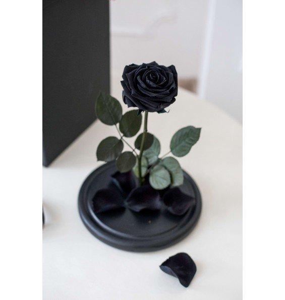 """Роза в колбе """"Магический черный"""""""