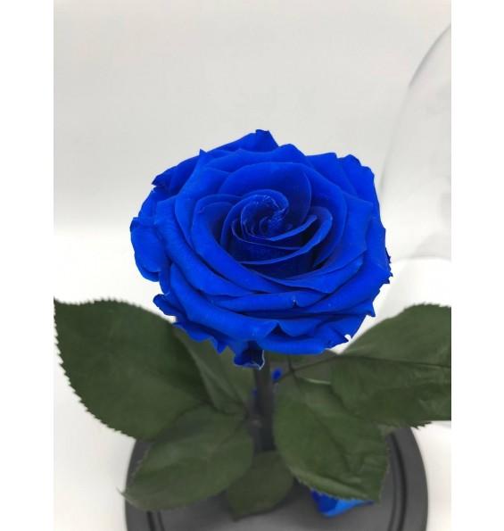"""Роза в колбе """"Восточный синий сапфир"""""""