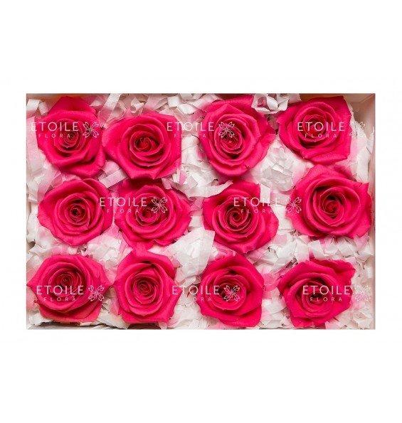 Роза мини ярко розовая