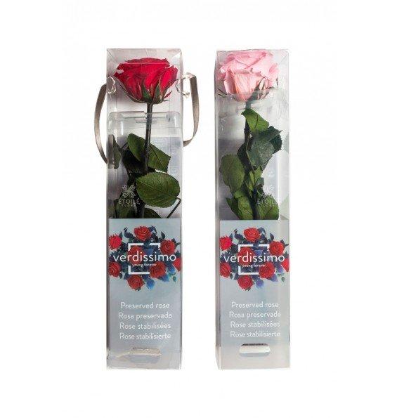 Роза на стебле мини в коробке розовая