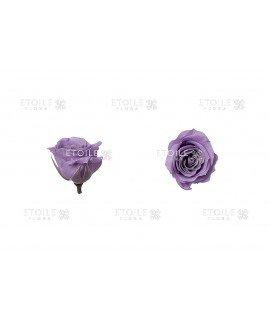 Роза премиум синяя