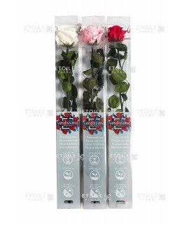 Роза на стебле стандарт в упаковке красная