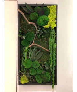 """Картина из растений """"Бостон"""""""