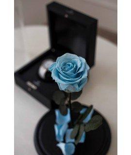 """Роза в колбе """"Голубая лагуна"""""""