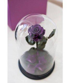 """Роза в колбе """"Фиолетовый сон"""""""
