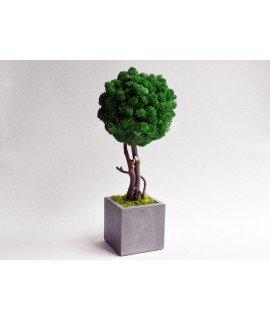 Дерево из мха маленькое