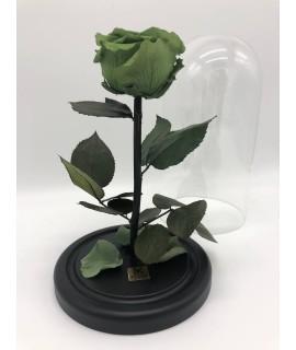 """Роза в колбе """"Зеленый тропик"""""""