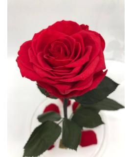 """Роза в колбе """"Красный закат"""""""