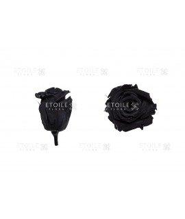 Роза мини черная