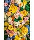 Цветы и мох - Фото2
