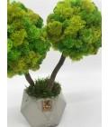 Дерево из мха - Фото3