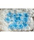 Тубероза голубая - Фото3