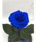 """Роза в колбе """"Восточный синий сапфир"""" - Фото2"""