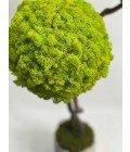Дерево из мха в ассортименте - Фото3