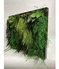 Картина из стабилизированной зелени - Фото2