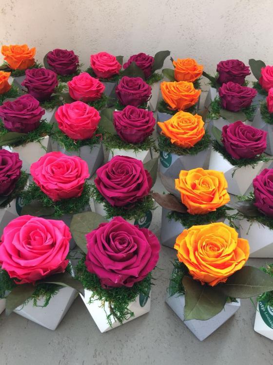 Волшебные розы на подарки коллективу
