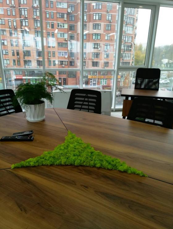 Офисный стол со мхом