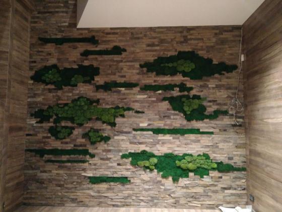 Стена вставки из плоского мха и кочки