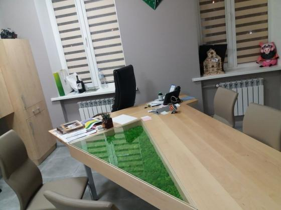 Мох в офисном столе