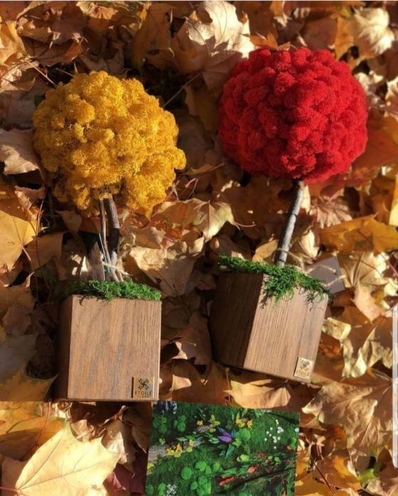 Цветные деревья из мха