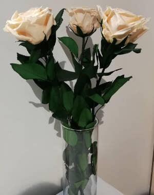 Букет стабилизированных роз: фото