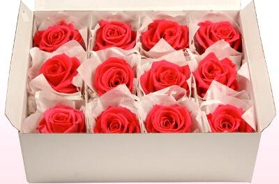 Стабилизированные розы в коробке: фото