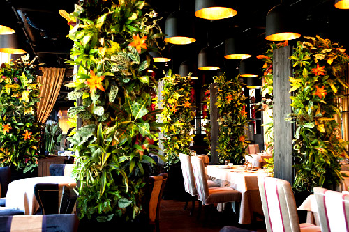 Озеленение ресторана: фото