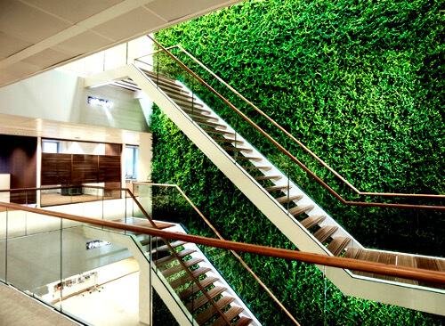 Фитодизайн торгового центра: фото