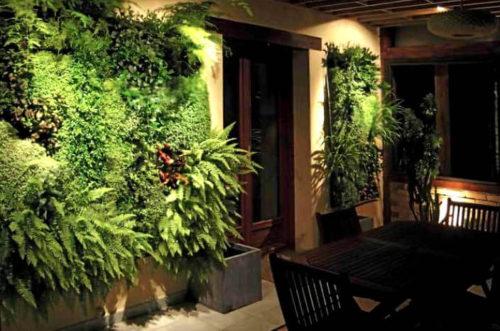 Вертикальное озеленение от специалистов EFLORA