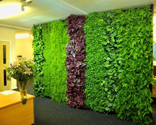 Офис с озеленением: фото