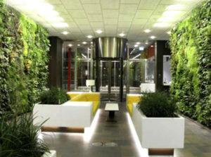Озеленение гостиниц и отелей