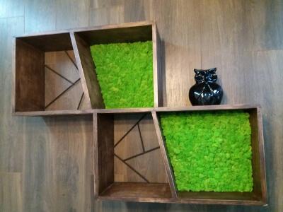 Стабилизированный мох в декоре: фото