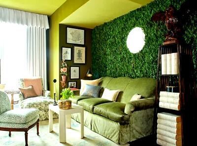 Озеленение вертикально в доме: фото