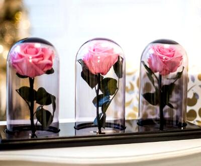 Розы в колбе: фото