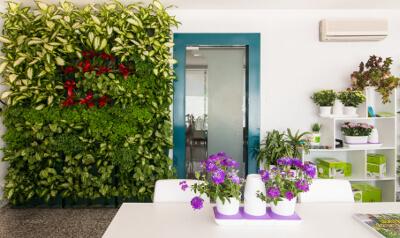 Зеленая стена в квартире: фото