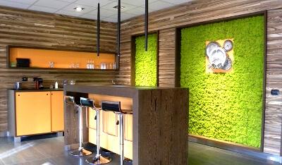 Озеленение кухни: стабилизированным мхом: фото