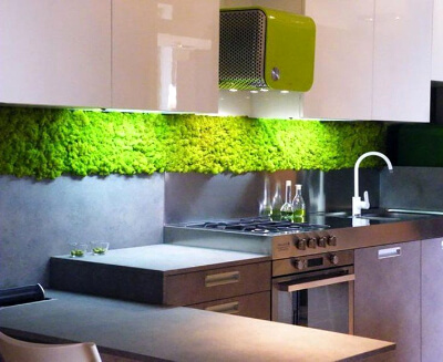 Вертикальное озеленение кухни мхом: фото