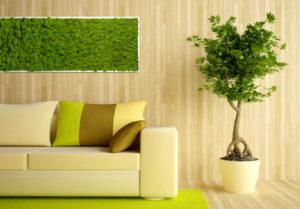 Декоративный мох в интерьере квартиры