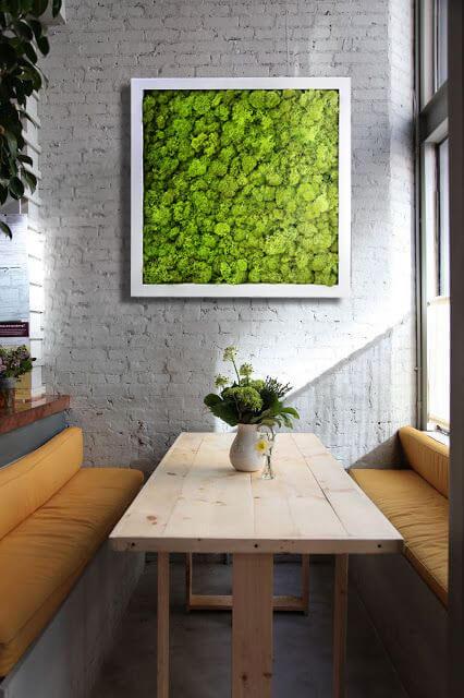 Озеленение стены с помощью мха