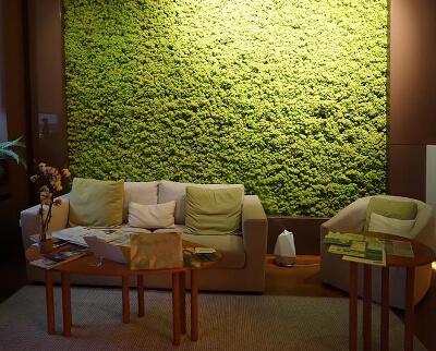 Вертикальное озеленение комнаты