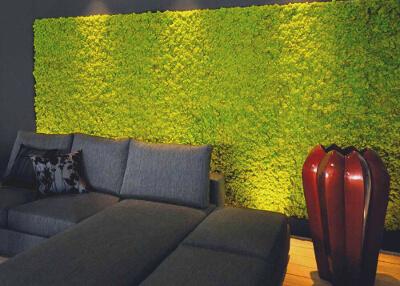 Озеленение гостинной