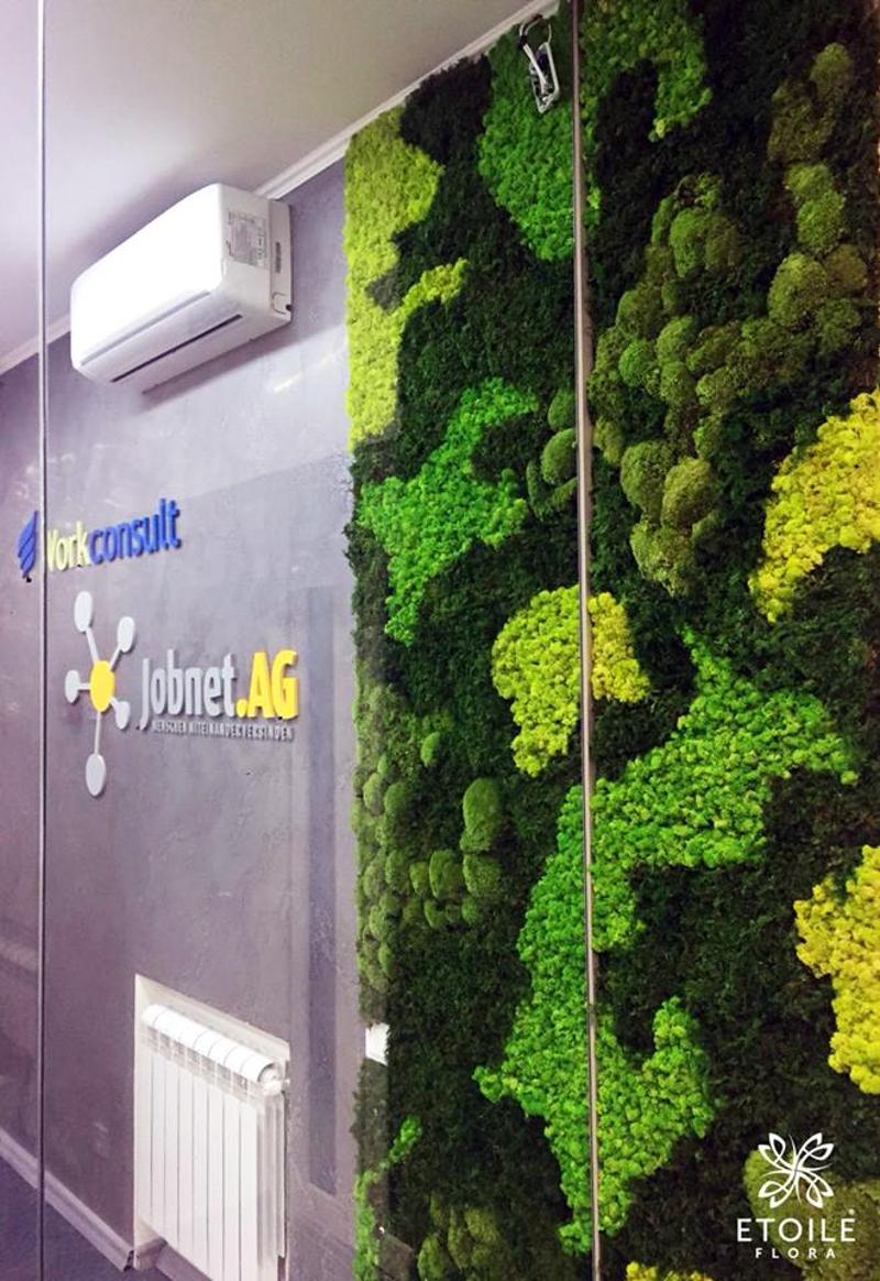 Зеленая стена из стабилизированного мха в офисе