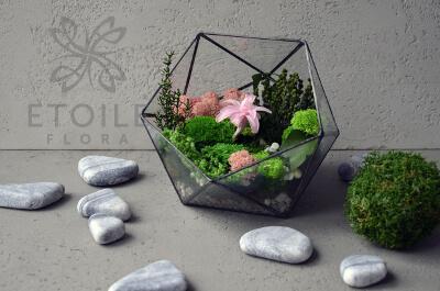 Флорариум со стабилизированными цветами