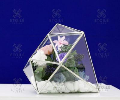 Необычный флорариум