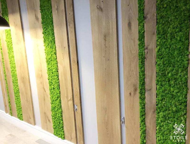 Озеленение квартиры мхом