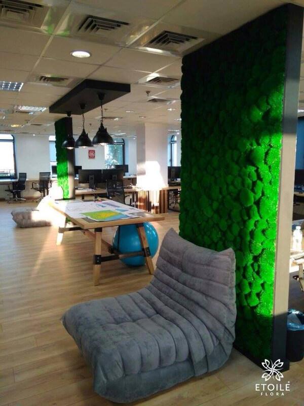 Озеленение офиса от Etoile Flora